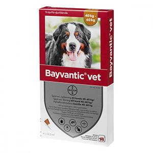 Bayvantic Vet Hund 40-60 kg