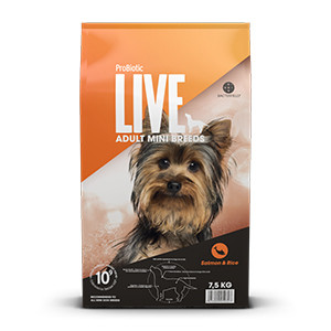 LIVE Adult Dog Mini Breeds - Laks & Ris