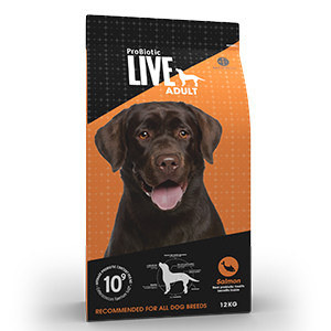 Probiotic Live Adult Dog