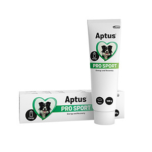 Aptus Pro Sport pasta 100g