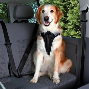 Dog Protect sikkerhedssele til hunde